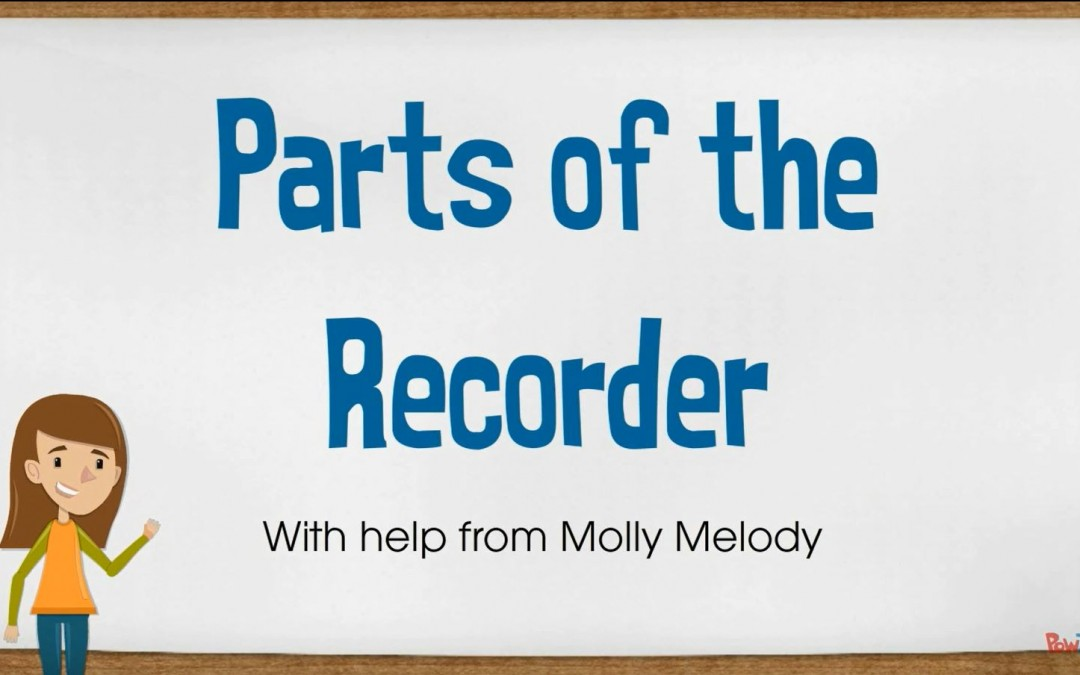 parts of the recorder
